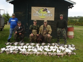Canada goose outfitters, waterfowl outfitters and duck outfitters with goose guides, duck guides and waterfowl guides
