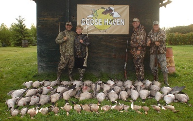 Canada goose guides, Canada goose hunting